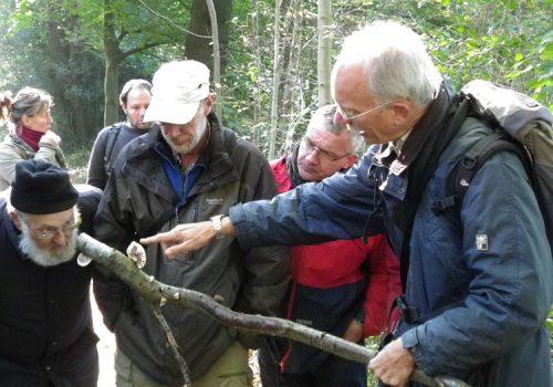 Natuurpresentaties - Vosbergen 101010 KNNV excursie