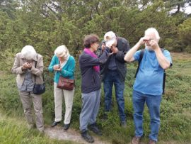 Natuurpresentaties - Drents Landschap4